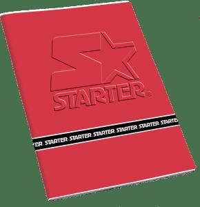 QUADERNI MAXI GR.100 – RIG. 5MM FF 25+1 STARTER – PACCO DA 12